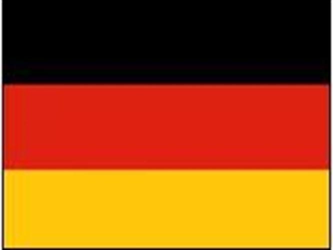 Alman Meclisi 'bayrak' şokunda